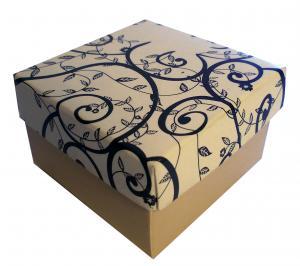 Caixa de Anel